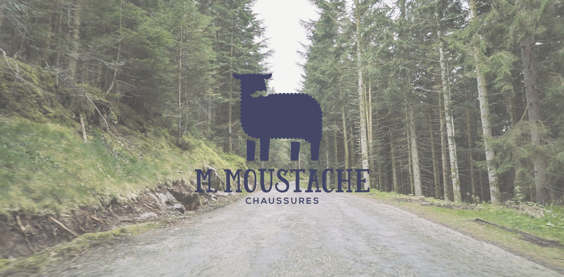 monsieur-moustache-chaussures-cover